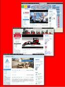Beispiele für Weibo-Seiten (Microblogs) deutscher B2B-Unternehmen