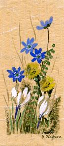 Nr.59 Frühlingsblumen