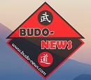 Budo-news.com