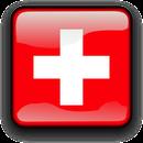 Schweizer Dienstleistung
