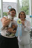 "Folie A Deux Expealidocious - 3 Best Kitten Allbreed CFA Europe Regional show  ""Cleopella"", Tallinn, August 6, 2011."