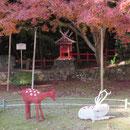 大原野神社での展示