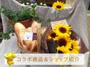 コラボ商品&ショップ紹介【花屋まるよし】
