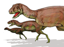 Bild eines Aucasaurus