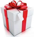 Aeroclub de Sens - Cadeau Vol d'Initiation
