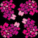 AUNDA healing - Gefühle wie Schmetterlinge im Bauch free Bild von Ewey auf Pixabay