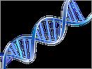 la SMA une maladie génétique héréditaire