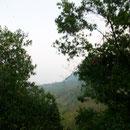 Vista desde el Sótano