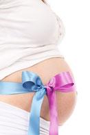 妊娠中の妊婦のお腹