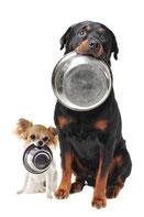 Hundefutter, Glutenfrei, Getreidefrei von Versele Laga
