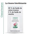 L'extrait de Cistus Incanus possède un fort effet antioxydant (protection des cellules), c'est-à-dire la capacité à repousser et neutraliser les radicaux libres.  AloeVeraSante.net LR