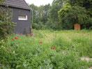 im ehemaligen Garten