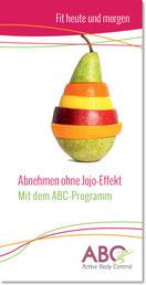 Flyer zum ABC-Programm