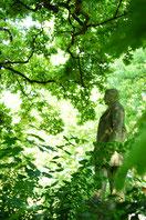 meilleurs spot photo ile de france jardin agronomie tropicale atypic photo