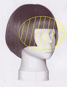 ストレートパーマの施術範囲が前髪~耳前までのイラスト