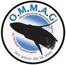 logo ommag