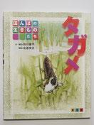 タガメ (田んぼの生きものたち))