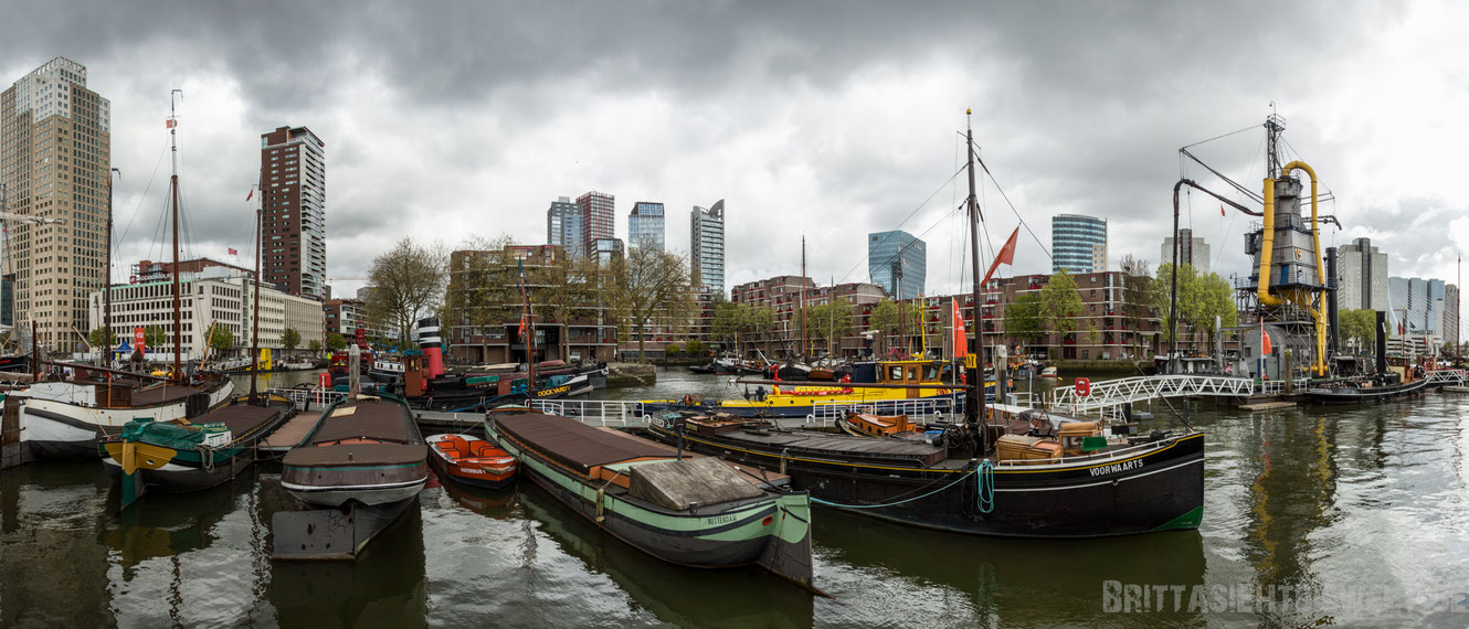 rotterdam, oude, haven, alter, hafen, panorama