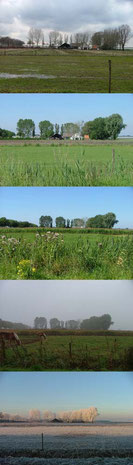 boerderij van week tot week 40 x 140 cm