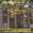 Ref : SYR 141487 - Orgue historique de Floh-Seligenthal