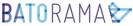 Diagnostic organisationnel pour Batorama