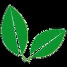 Wir verwenden  FSC®-zertifiziertes Papier  aus nachhaltigen Quellen