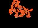 Tigress-yoga: Die Symbiose aus Yoga und Kung Fu. Der kraftvolle Power Vinyasa Yoga.