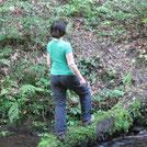 Auf in den Wald
