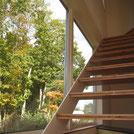 雑木林の家