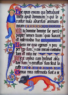 Psautier de Luttrell, Enluminure du XIVe siècle