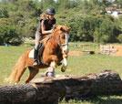 TREC aux poneys d'alcibiade