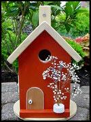 Vogelhuisje,nestkastje hout_Chocolade 5_lichtbruin_dak blank_deur blank