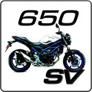 Suzuki SV 650 Kennzeichenhalter