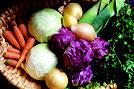 Beratung, Gemüse