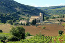Kulturreise in die Toskana Reiseprogramm