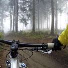 """Fahrrad fahren in der Gegend """"Les Lande », 5 Minuten vom Schloβ Belle Epoque"""