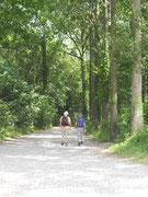 Randonnée autour des cabanes dans les arbres Saint Valéry sur Somme