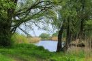 Naturschutzgebiet Tidewald