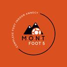 mont foot 5, activité bubble foot 74 anniversaire, team building activité
