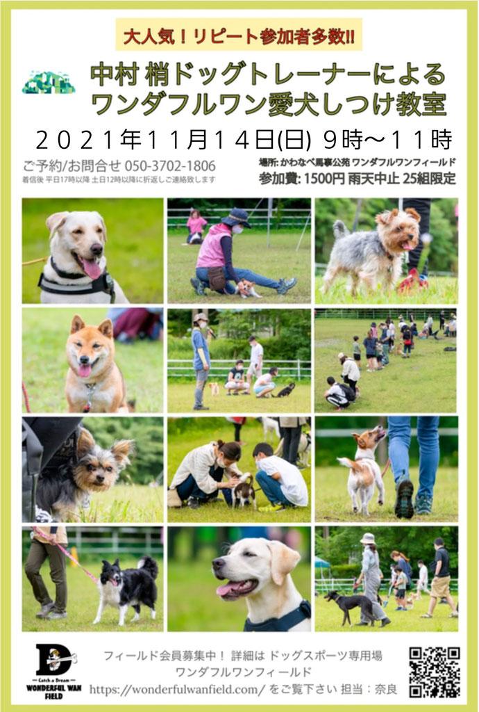 中村ドッグトレーナーFM762収録YouTube動画