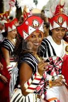 リオのカーニバル フリー画像参照