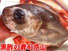目鯛 メダイ 寿司