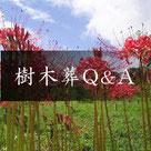 天徳寺樹木葬 樹木葬Q&A
