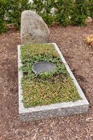 Grab Bewässerungssystem Friedhof wenig Wasser pflegeleichte Grabbepflanzung volle Sonne im Sommer