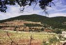Visiter Galilee et Golan