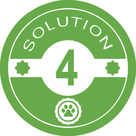 Solution 4 dogs-solutions
