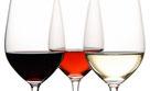 vinos de cataluña