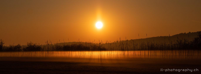 Sonnenaufgang über der St-Petersinsel am Bielersee.