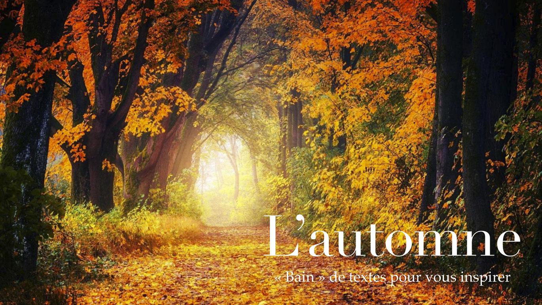 Bain de textes et d'images sur l'automne