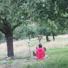 Bilder Naturcoaching